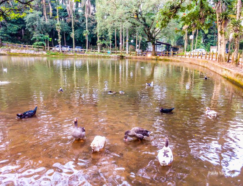 lago-parque-do-jaragua
